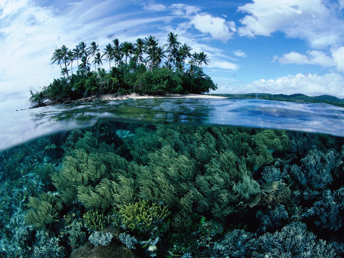 Отдых в Папуа-Новой Гвинеи