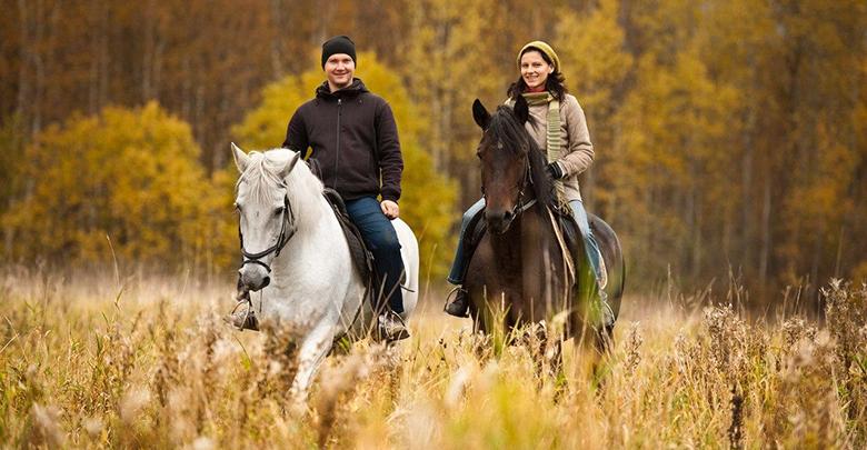 Важные правила при спуске и подъеме на лошади