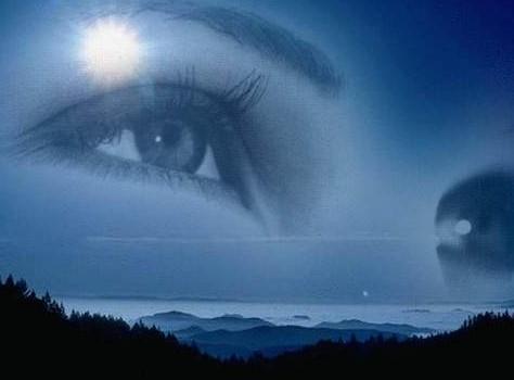 Ночь и красота