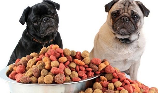 Лучшее предложение сухого корма для собак