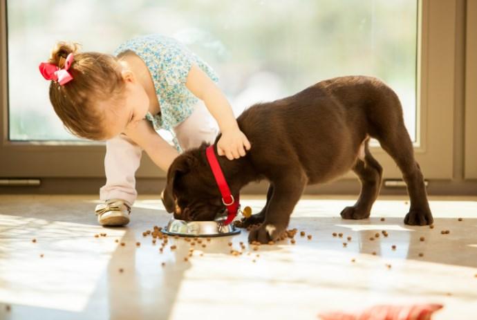 Лучший друг ребенка