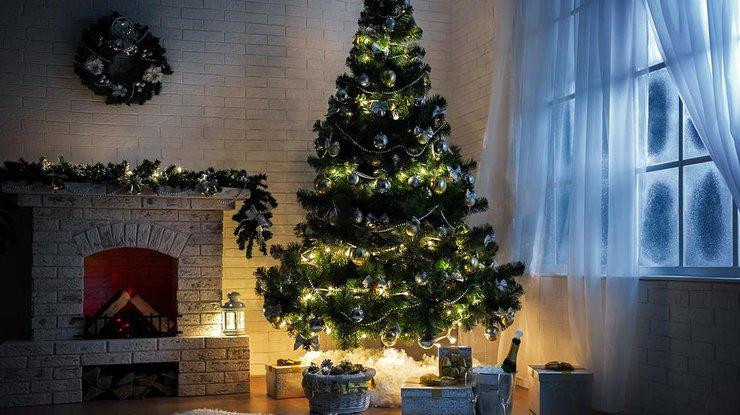 Традиция украшать елки на Новый Год